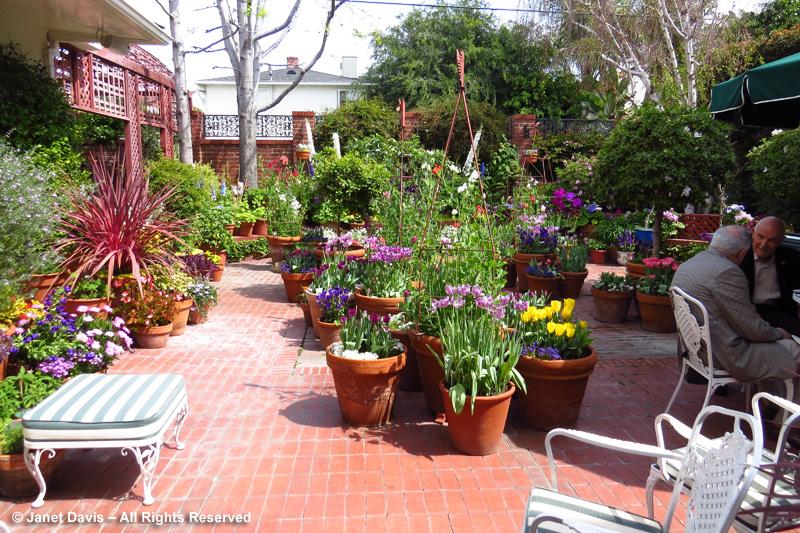 Garden Party Patio