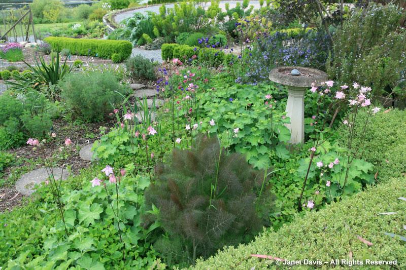HCP-Herb Garden
