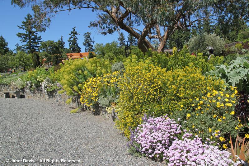 HCP-Mediterranean garden