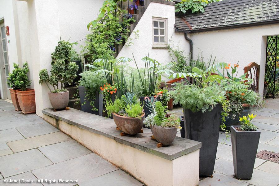 01-Teacup Garden Entrance Pots