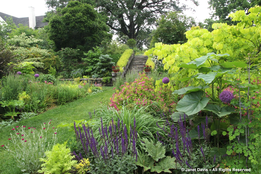 10-Tennis Garden plants