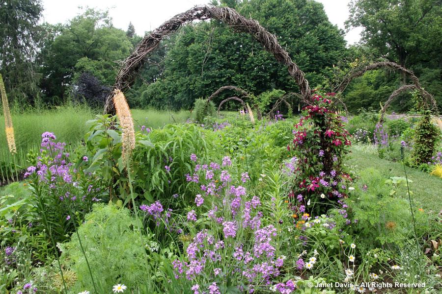 12-Cut-Flower Garden