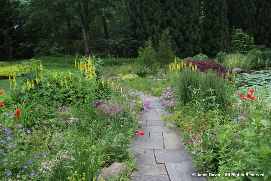 15-Pond Garden Plantings