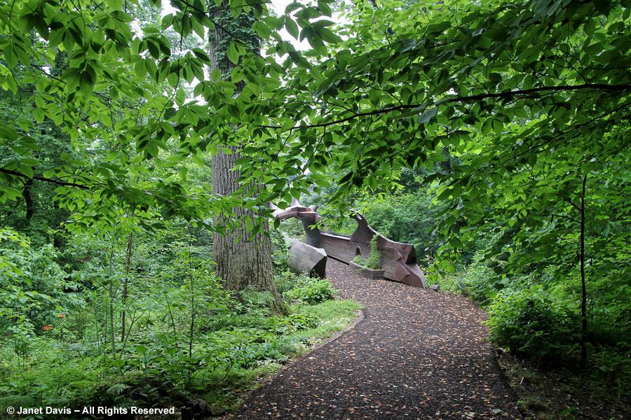 18-Beech in Bells Run Woods