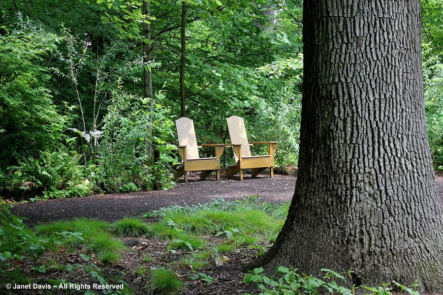 20-Trunk & chairs - Bells Run Woods