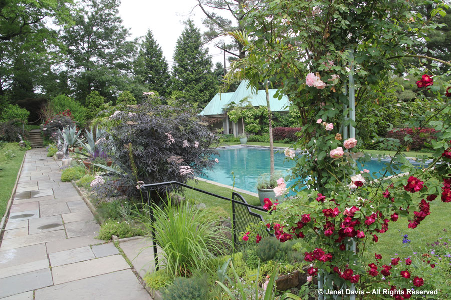 29-Swimming Pool