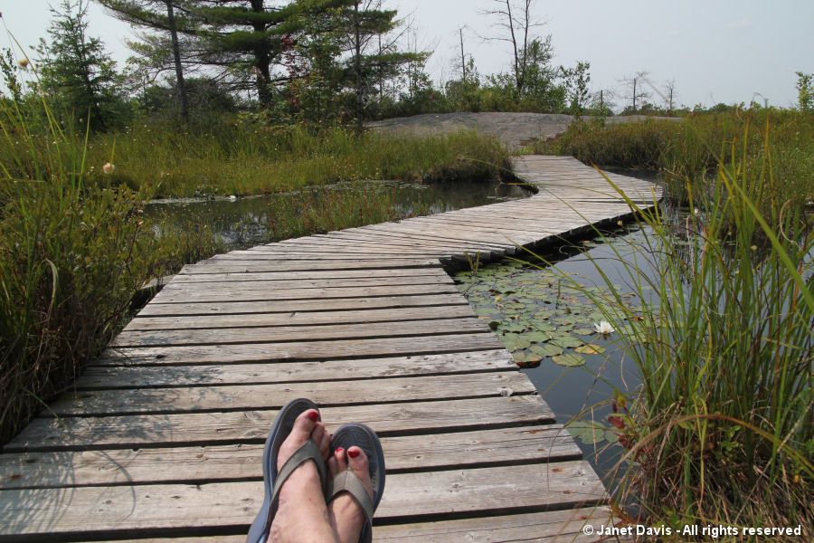 Bridge lounging-Torrance Barrens