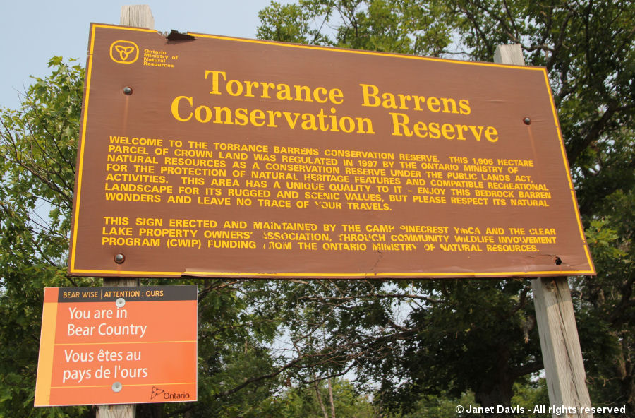 Torrance Barrens-bear country