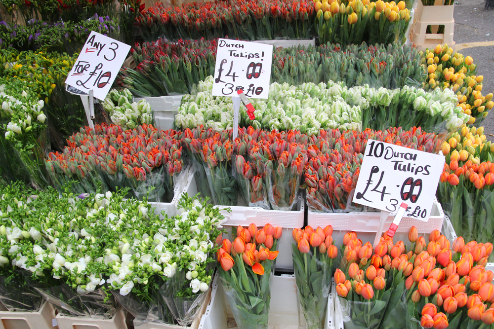 Tulips at Columbia Road Flower Market