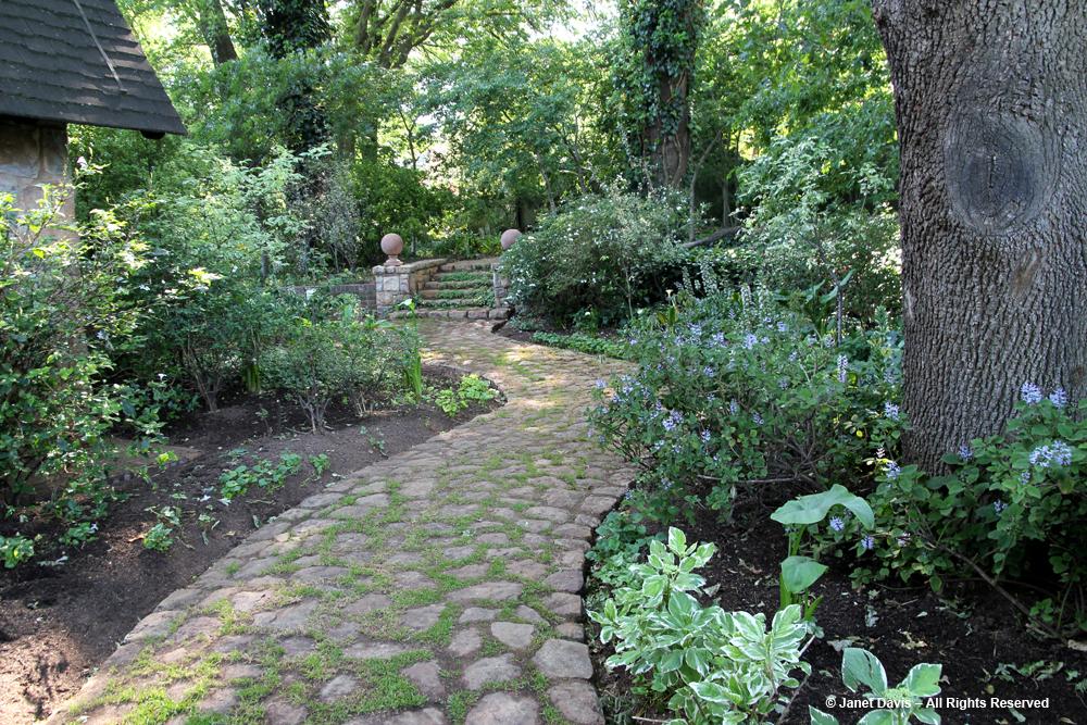 A garden jewel in johannesburg janet davis explores colour for South african garden designs