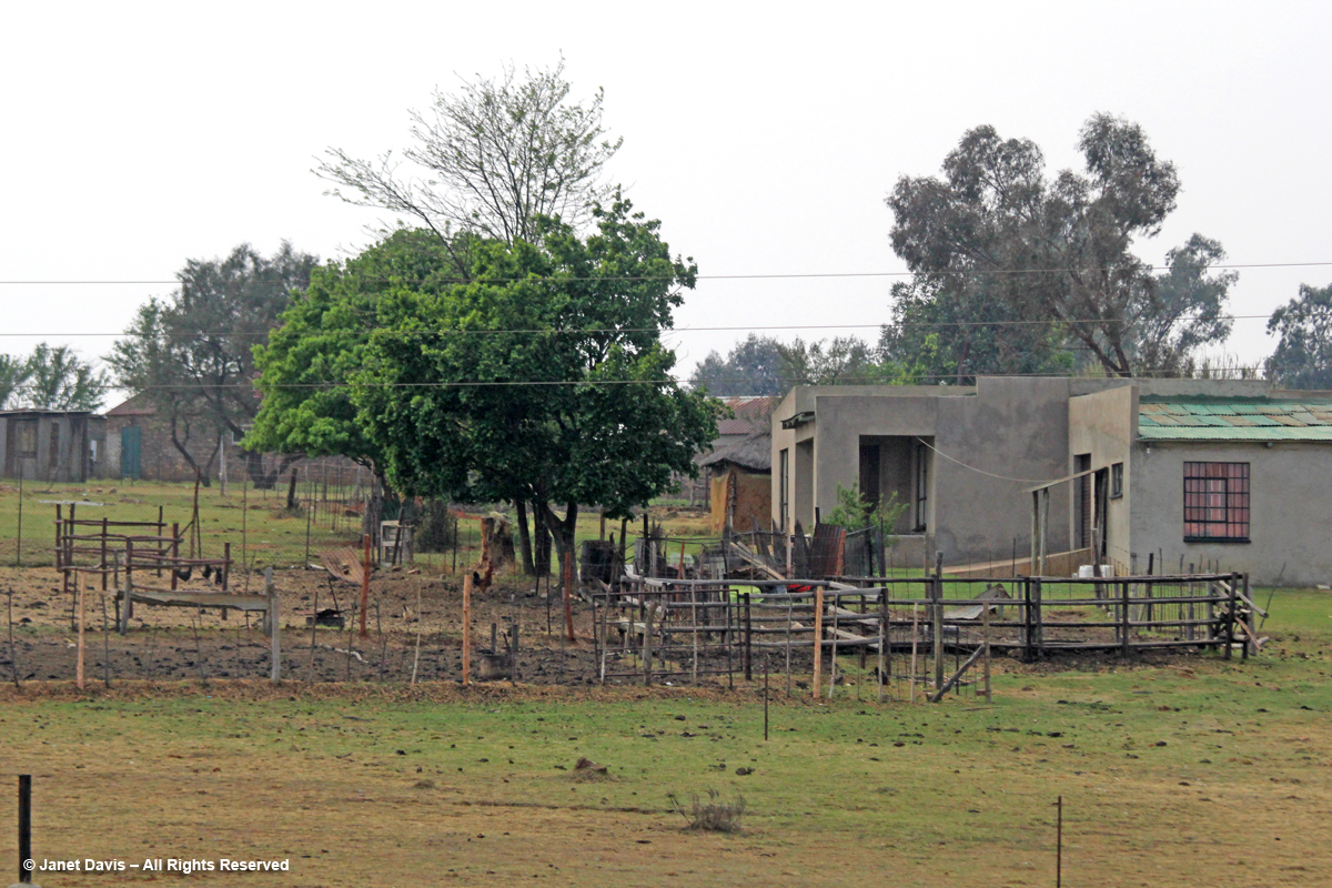 Rural house & farmyard-Mpumalanga