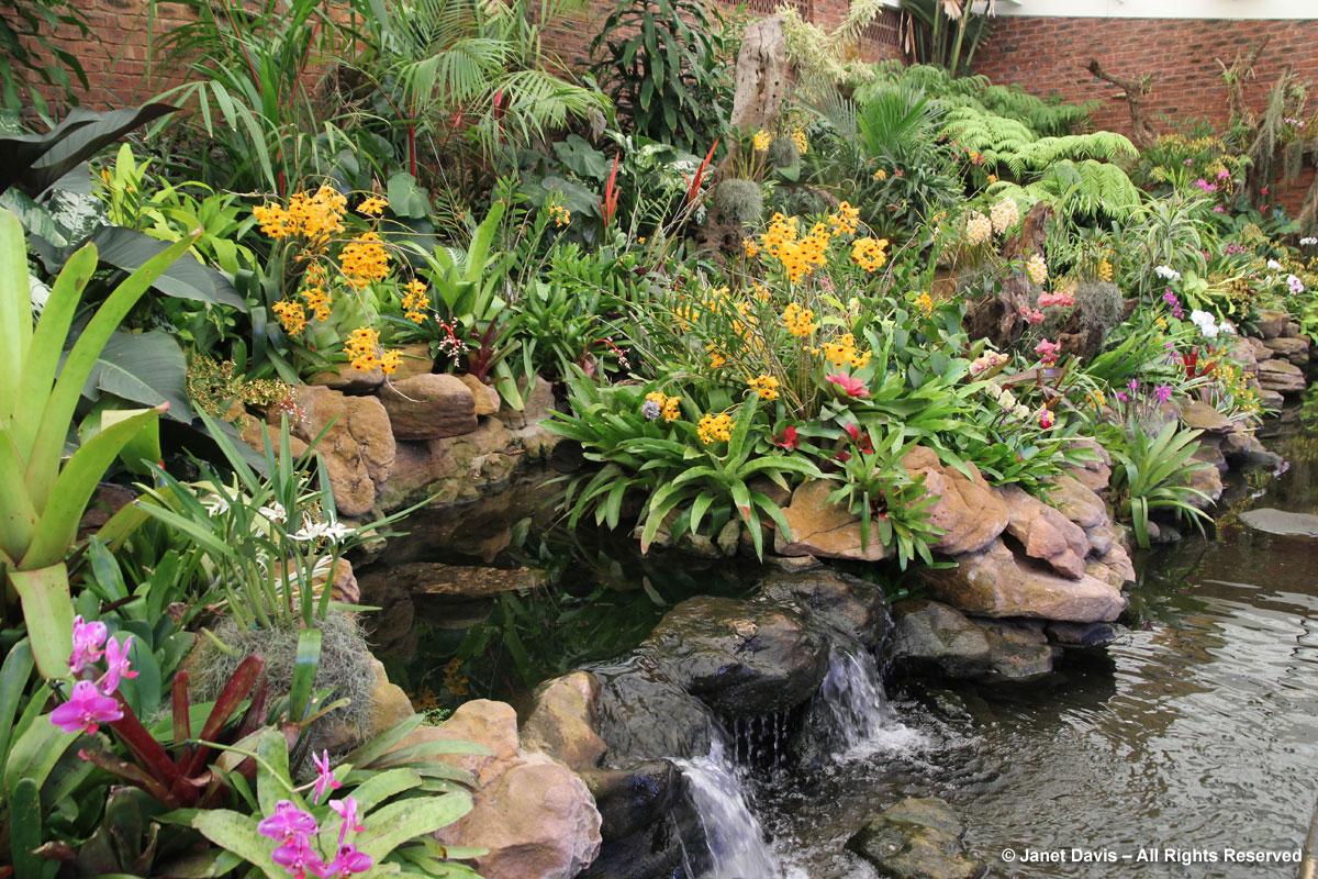 Ernest Thorp-Orchid House-Durban Botanic