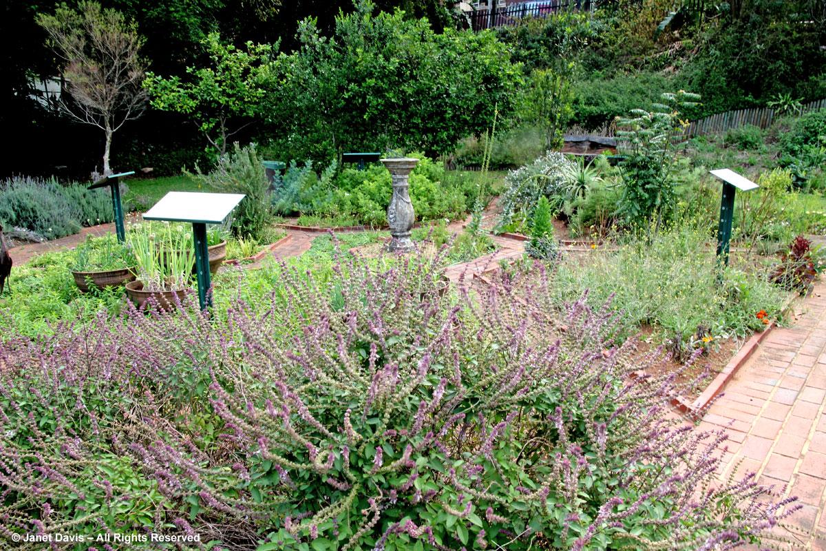 Herb Garden-Durban Botanic