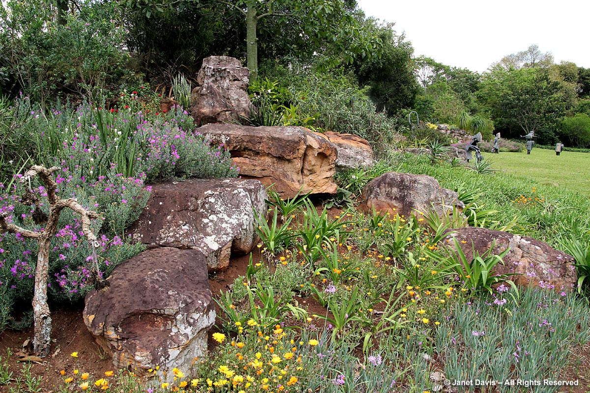 Indigenous-garden-Makaranga
