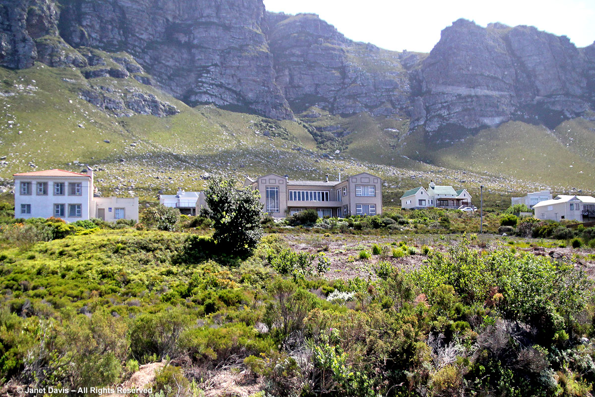 Houses Kogelsberg Bettys Bay