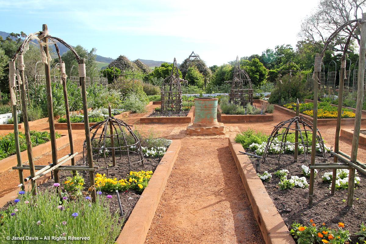 17-Raised vegetable beds-Babylonstoren