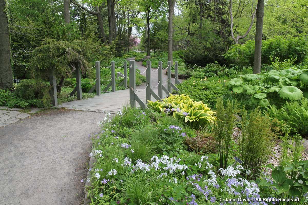 Bridge-Shade Garden-Montreal Botanical Garden