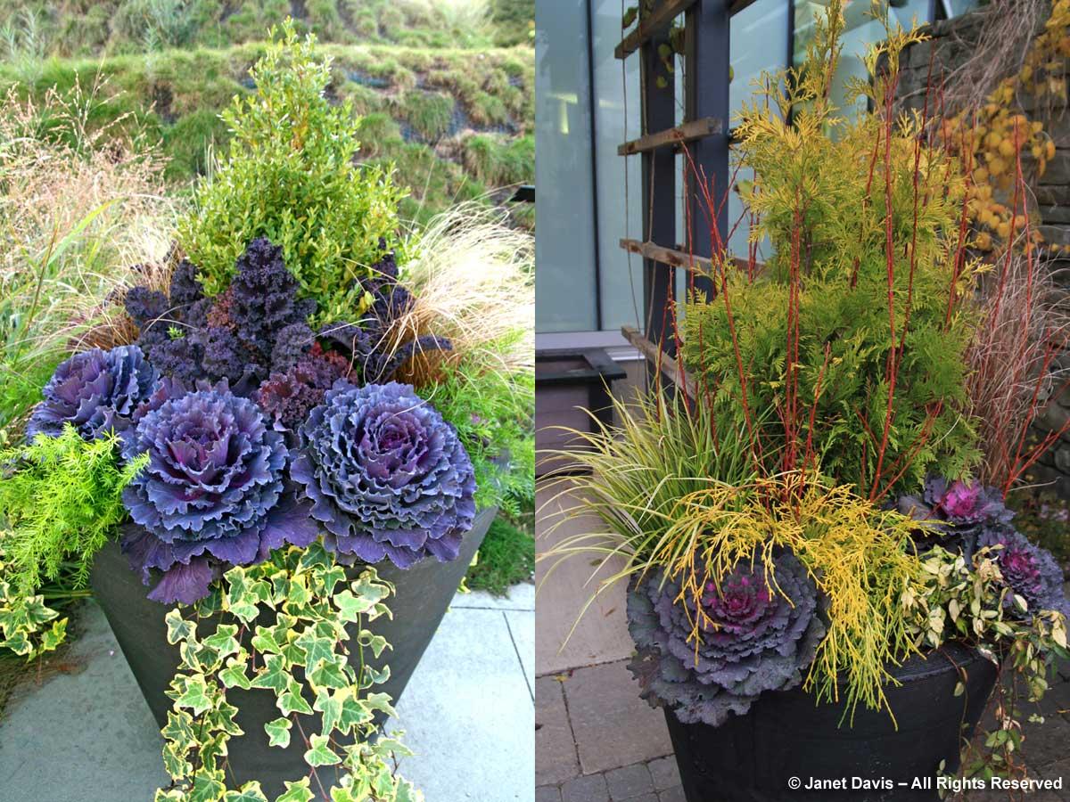 20-Autumn 2009 & 2011-Paul Zammit
