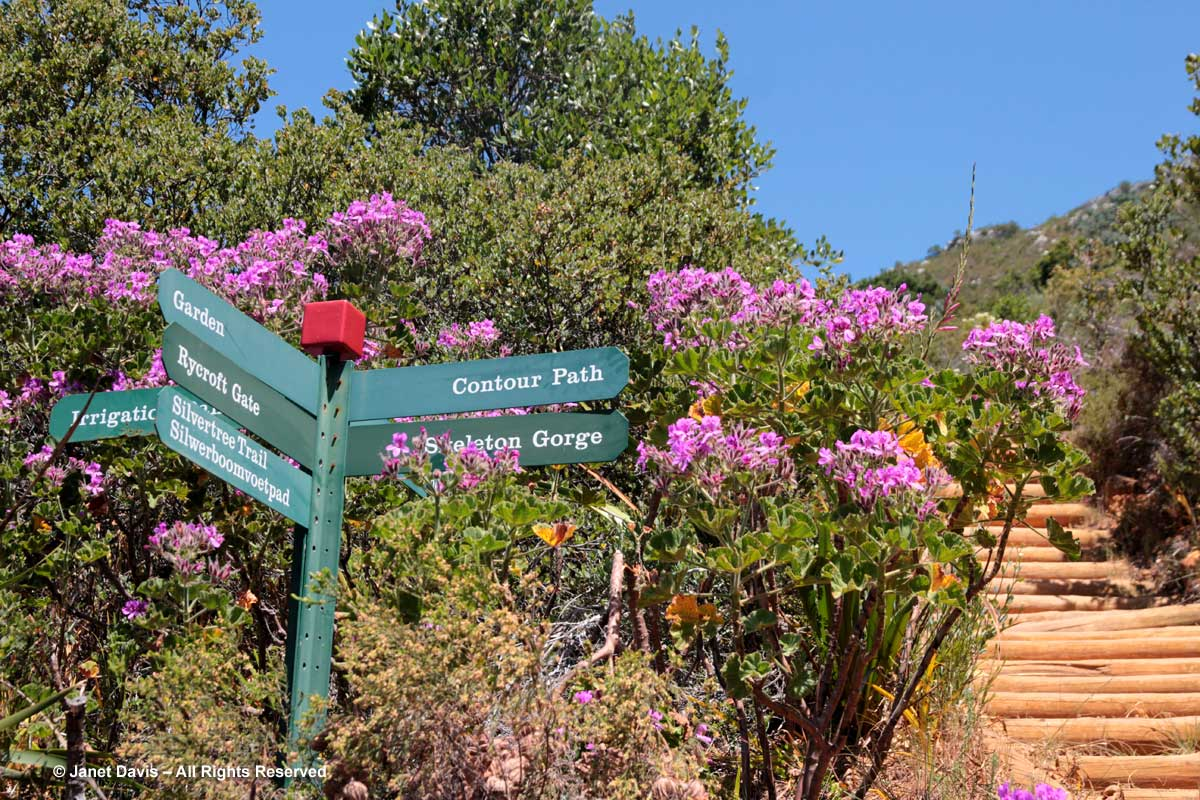 21-Garden Sign-Kirstenbosch