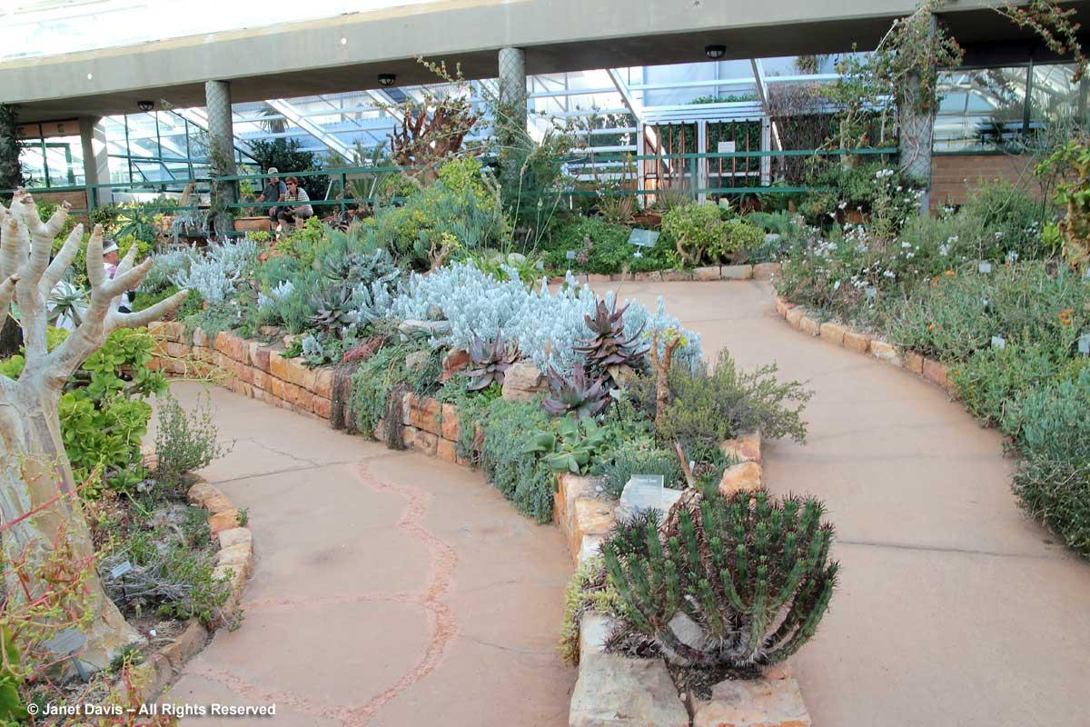 38-Kirstenbosch Conservatory