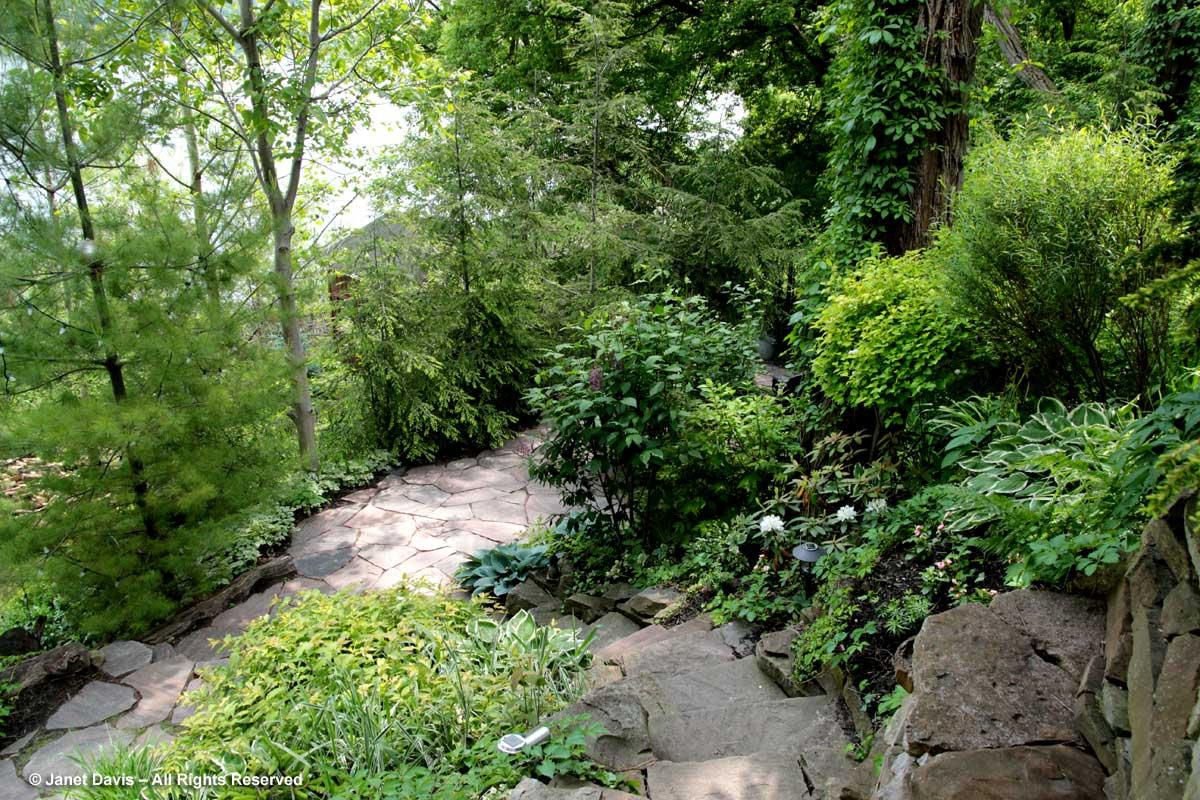 Stone stairway & path-Swansea