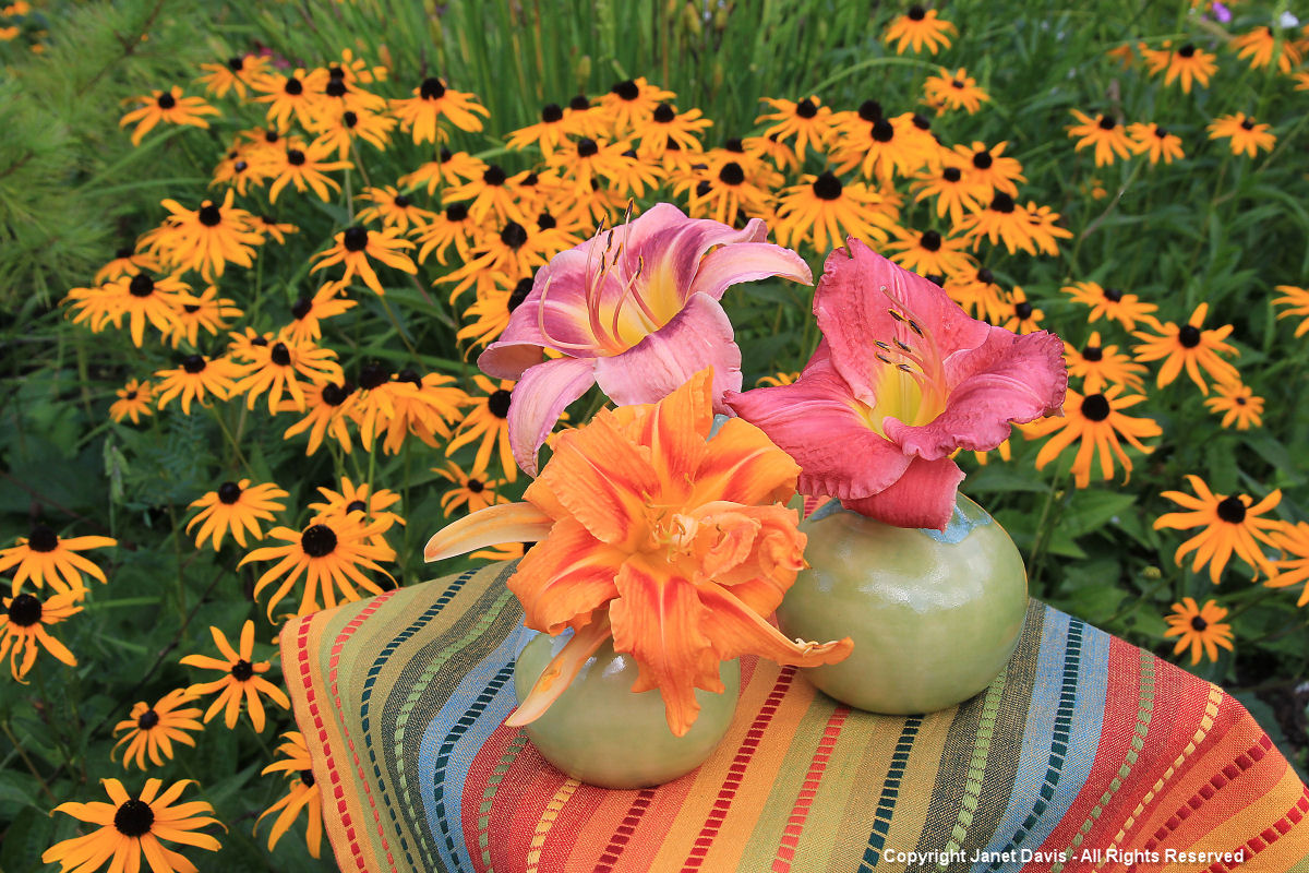Daylily bouquets