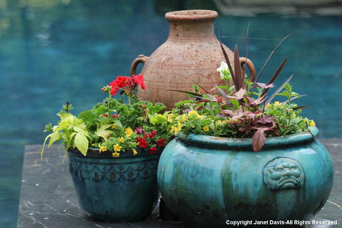 Turquoise pots.JPG