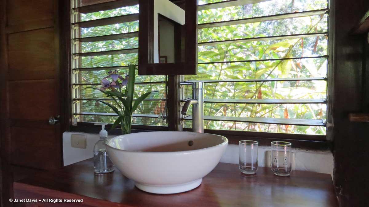 Sink & flowers-El Remanso