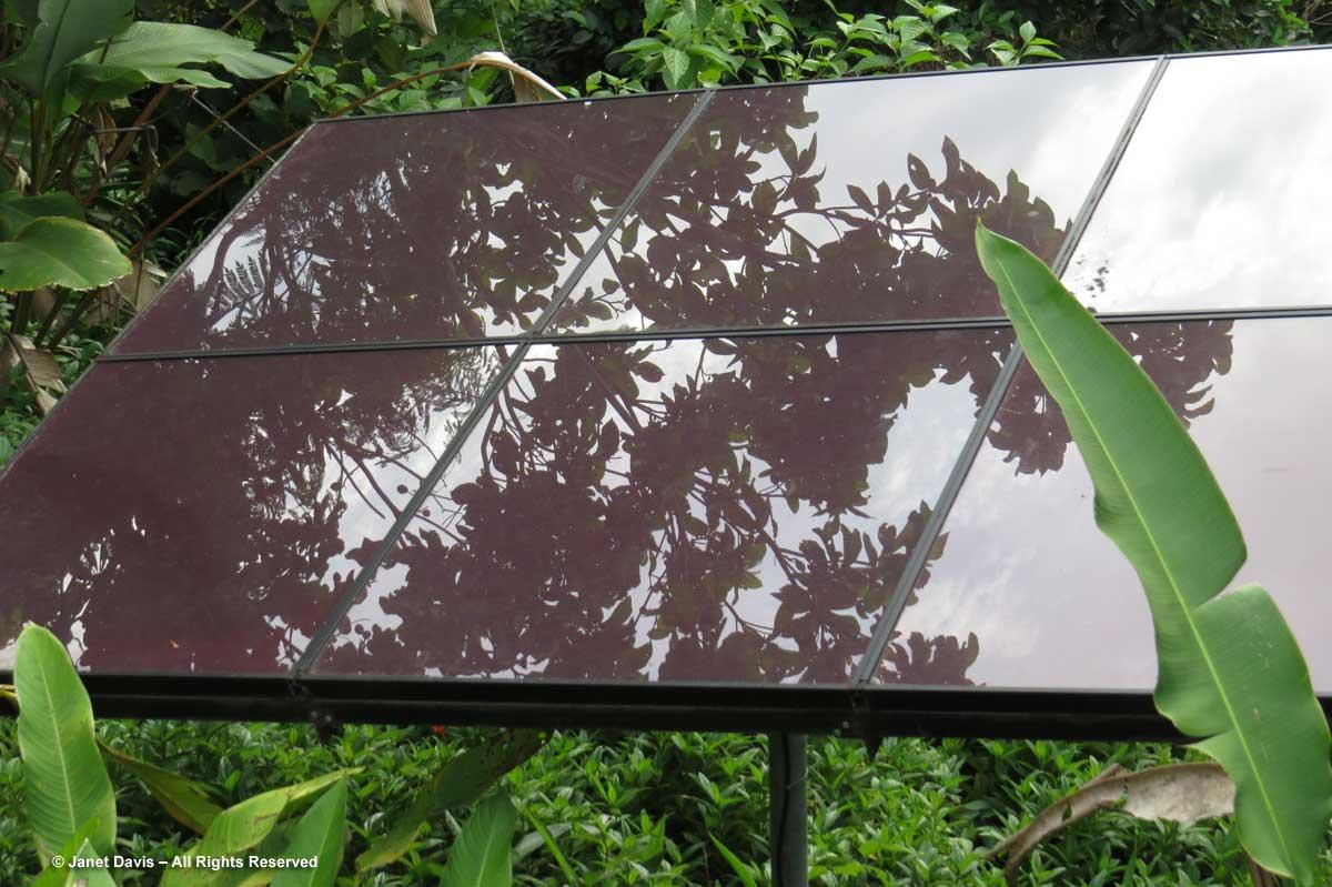 Solar panel-El Remanso