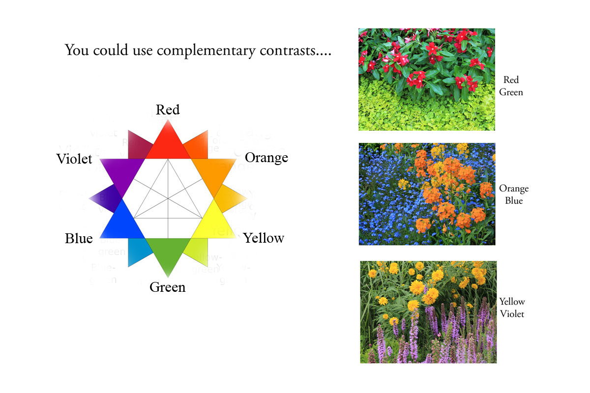 a complementary essay of a red Color mixing: today's featured  for example, violet and yellow are complementary colors so are red and green, and blue and orange  essay topics newspaper .