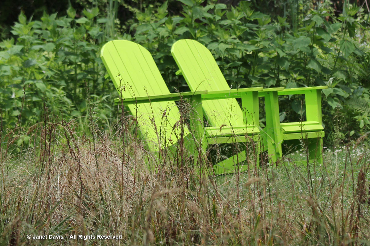 Chanticleer-Green chairs in Bell's Woodland