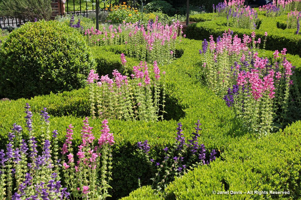 NYBG-Nancy Bryan Luce Herb Garden (2)