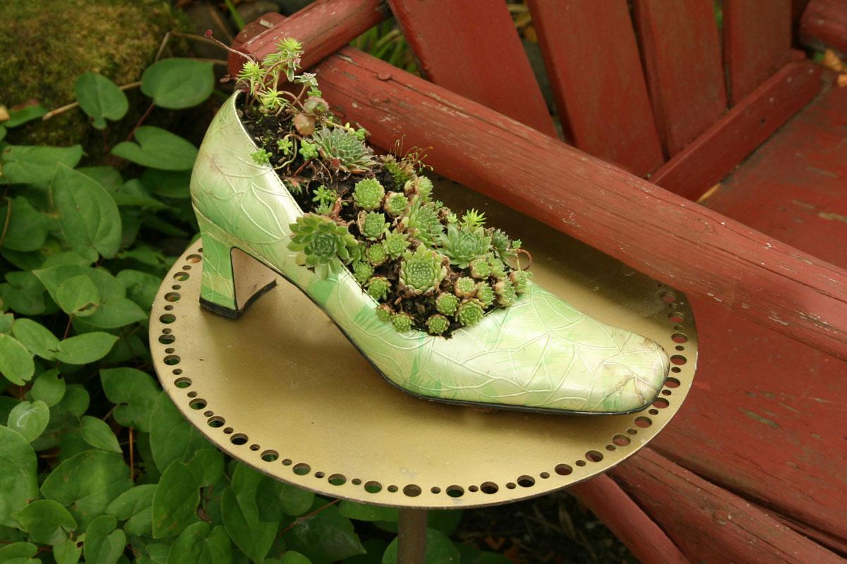 Nancy Goldman-Succulent High Heel