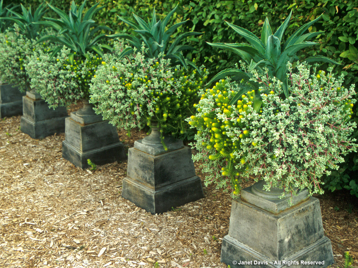 Urns-Landcraft Environments