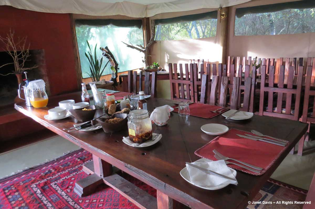 Camp breakfast-Kicheche-Laikipia
