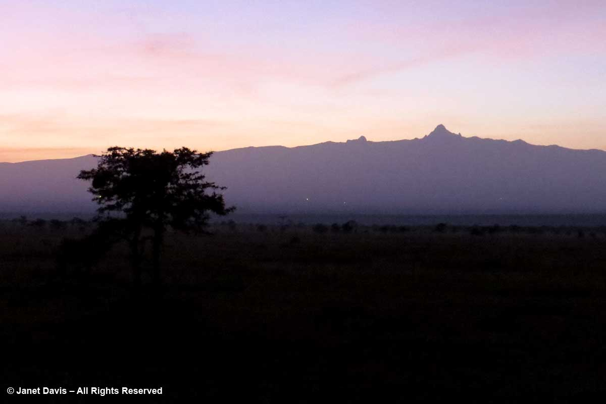 Mount Kenya at dawn-Ol Pejeta-Kicheche