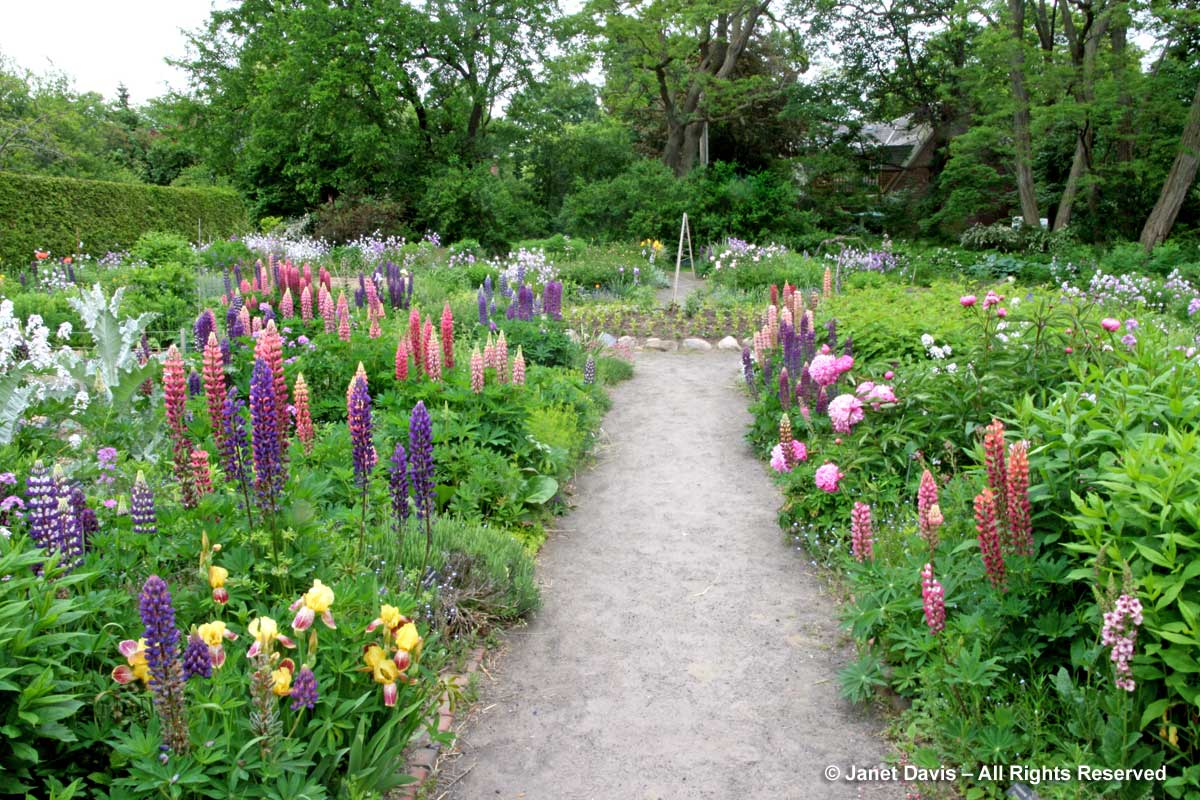 1-Spadina House gardens-early June
