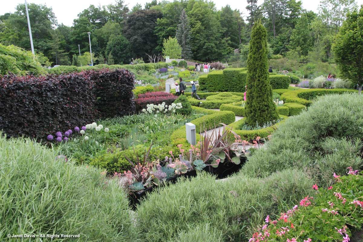 TBG-Garden1