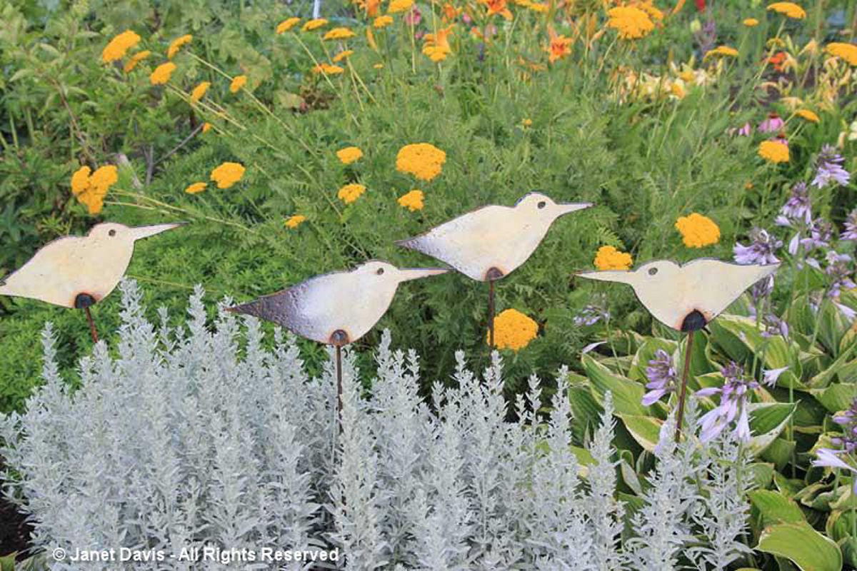 Artful Garden-Birds & Artemisia