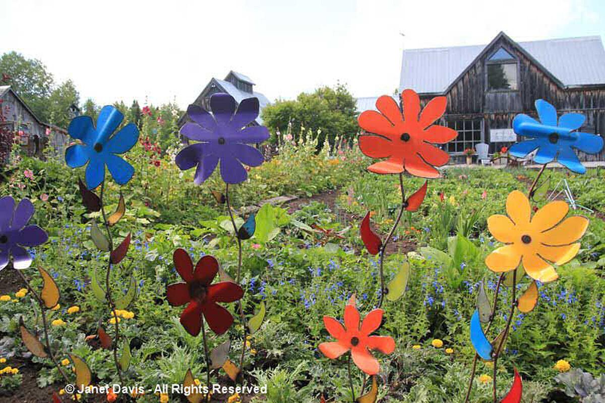 Artful Garden-Flowers