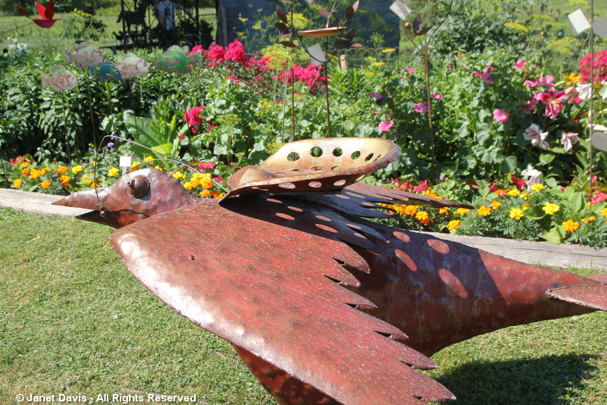 Artful Garden-JP Schoss-Flying Bird