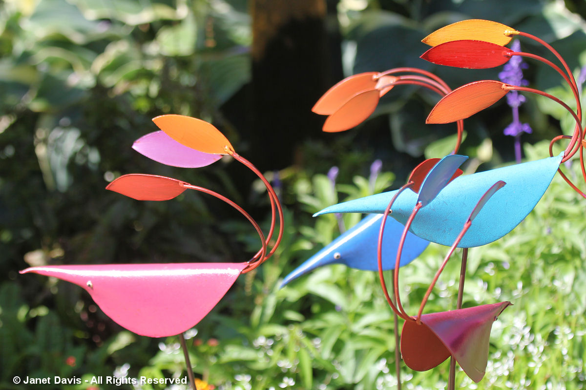 Artful Garden-Tod Waring-Fancy Bird