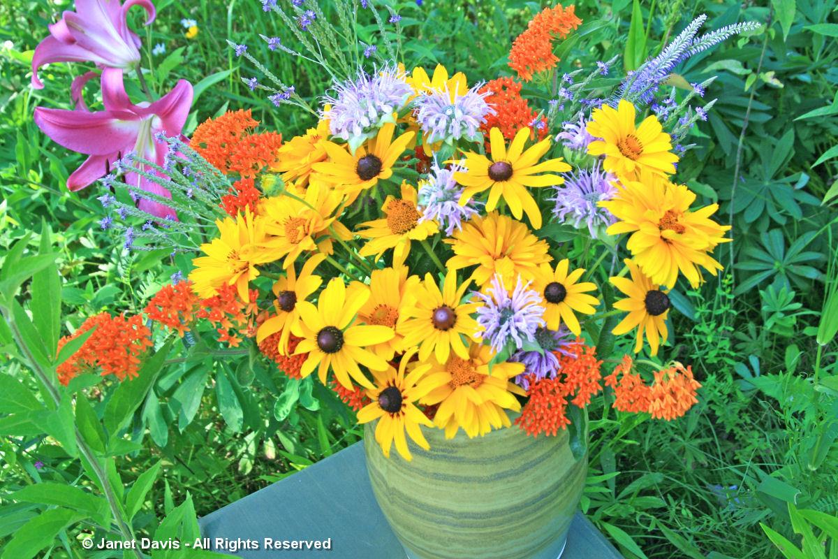 Asclepias tuberosa & bouquet companions