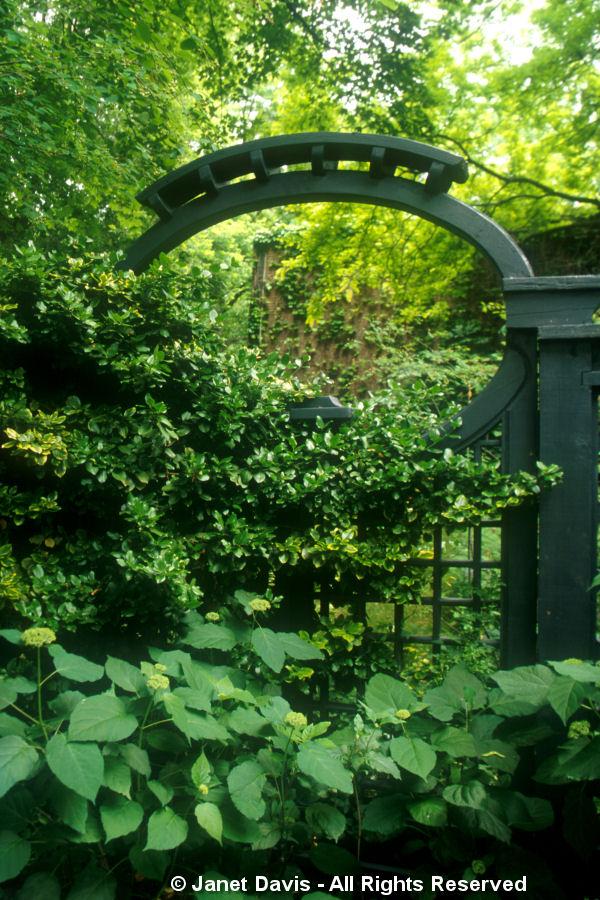 Black Garden Arch