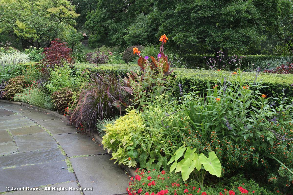 Conservatory Garden-Red flowers