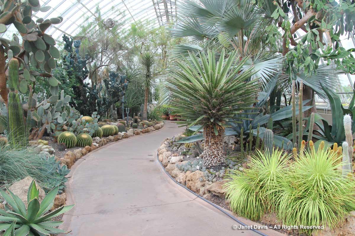 NYBG-Desert-Garden