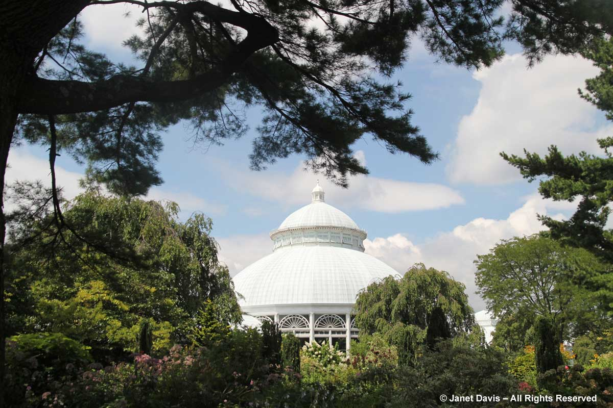 NYBG-Enid Haupt Conservatory Dome