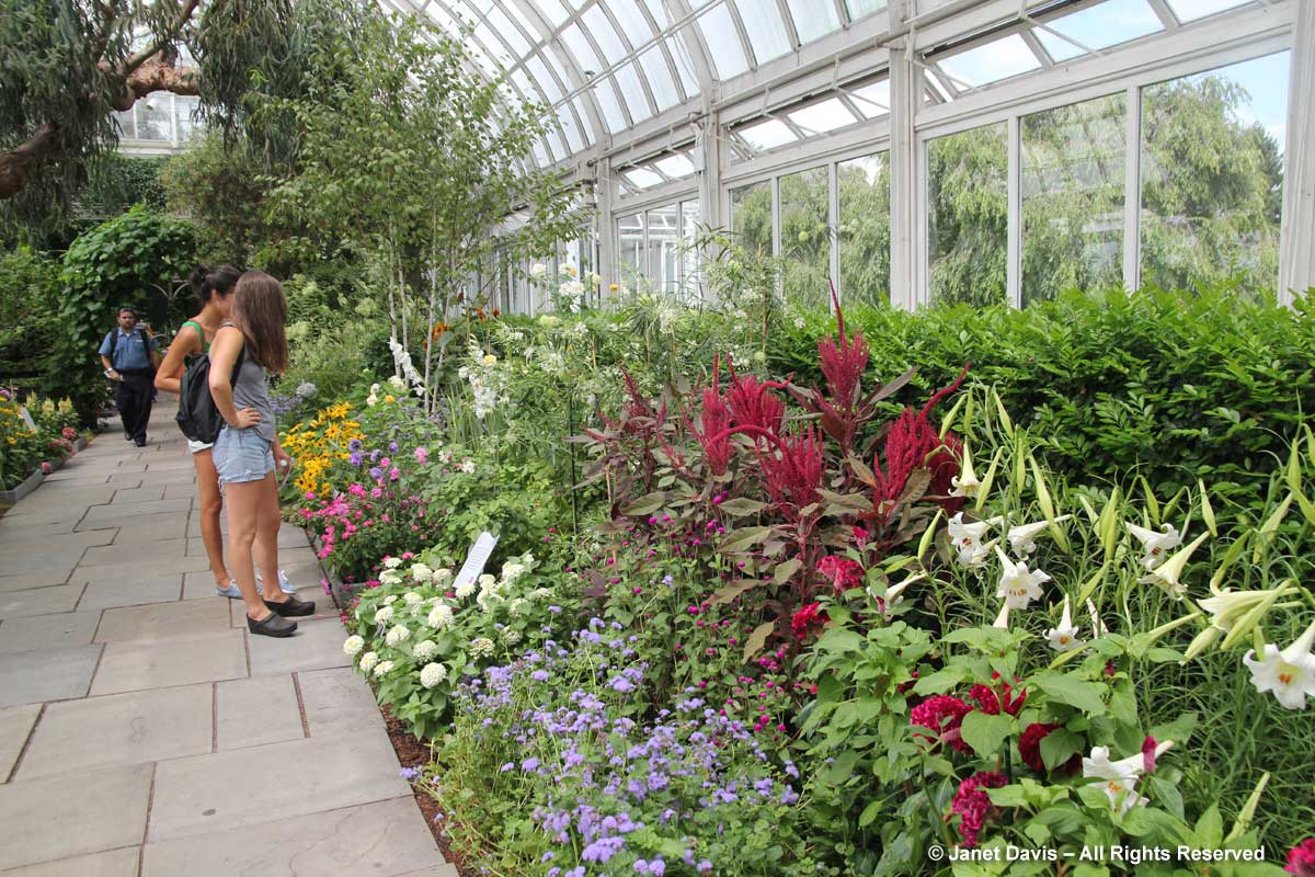 NYBG-Impressionist Garden Plants 2016-Francisca Coelho design (2)