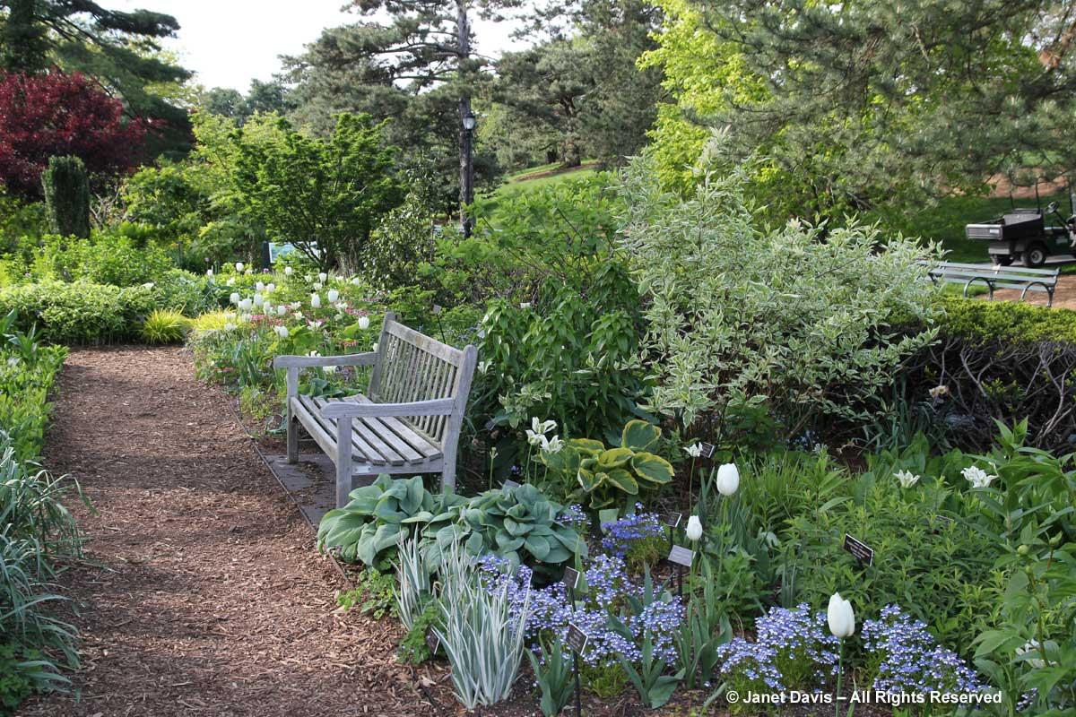 NYBG-Jane Watson Irwin Perennial Garden-Spring