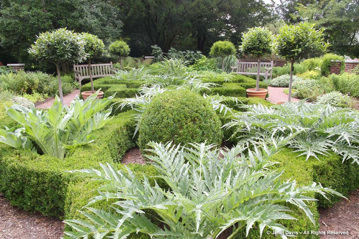 NYBG-Nancy Bryan Luce Herb Garden-2016